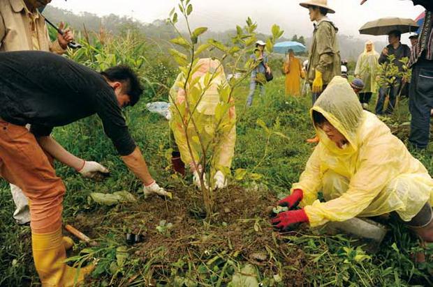 為了守護生態與環境,何彥廷與妻子陳虹雯承租土地,學習當農夫;圖為在他們農地上的樸門農法種植行動。