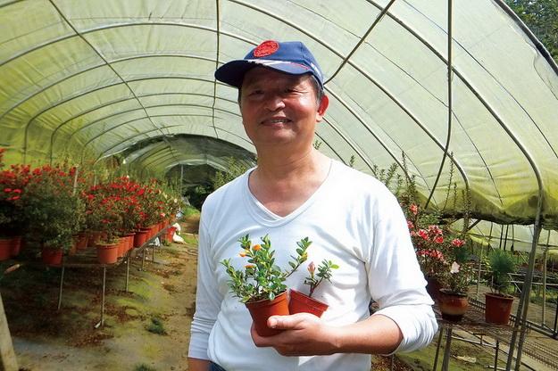 王俊隆從工業人變園丁,天天與花為伍。(唐茹蘋攝)