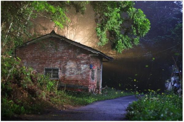 蓮華池是賞螢聖地,磚房前是攝影界喜愛取景的角度。(劉明浩攝)