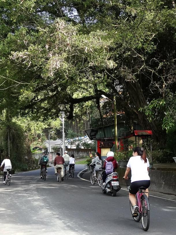綠色交通,綠色城鎮,單車租賃,台灣千里步道協會,周聖心,單車友善,埔里腳踏車步道,京都腳踏車步道,樂活,慢活,腳踏車道