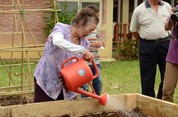 新故鄉基金會特別設計加高菜檯,讓彎腰不便或坐輪椅的老人也能照顧菜園。(柏原祥攝)