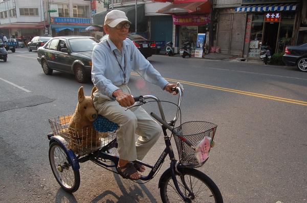 失智老翁騎三輪車 布偶狗伴行回憶路