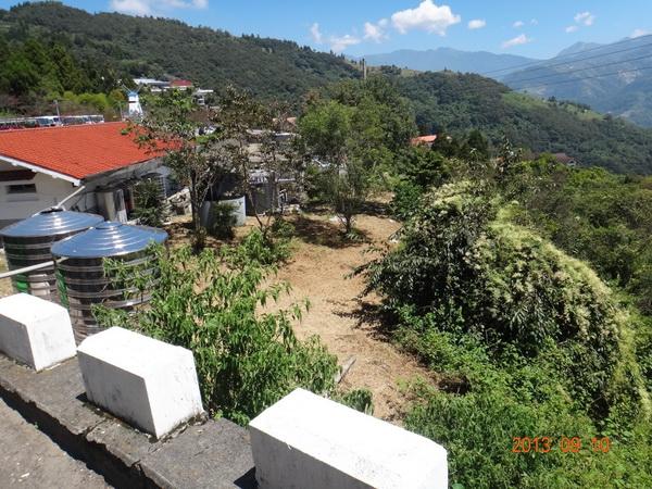 清境農場場方願意提供台14甲線7.5公里旁的山坡用地,用作興建停車場。(王俞哲攝)