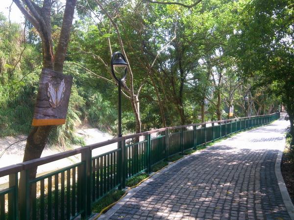 桃米坑溪蝴蝶步道啟用,碎石子路改造,安全性提升。(圖/日管處提供)