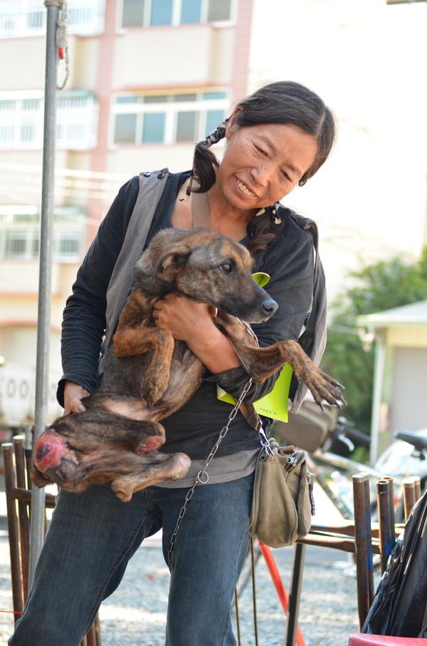 南投縣關懷動物協會在埔里鎮舉辦「無主貓靈狗靈超渡法會」,愛犬人士廖明里帶著失去後腿的「紅妹」前來參加法會。(廖肇祥攝)