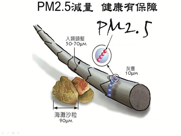 PM2.5是相當微細的懸浮粒子。(圖/蔡智豪提供)