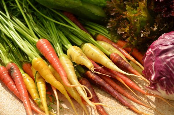有機無毒食材因為近年來的食安風暴,愈來愈受到重視。(柏原祥攝)