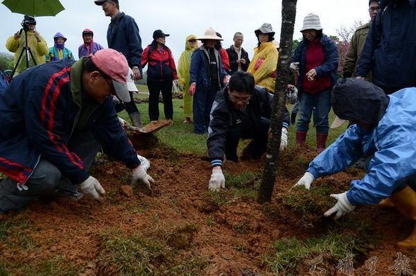 二百多名志工在暨大管理學院草皮種下櫻花樹。(柏原祥攝)