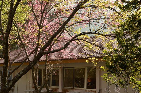 惠蓀林場日式房舍