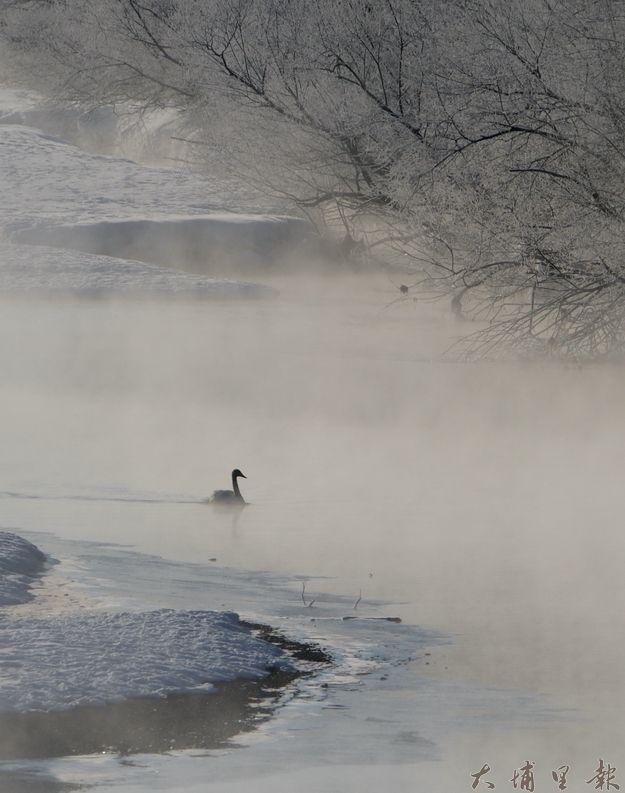 鄧文淵「來自北國」攝影作品,記錄北海道北國冷冽又生動的風光。(圖/鄧文淵提供)