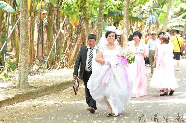 樂齡新娘穿著白紗,在油桐花隧道漫步。(柏原祥攝)