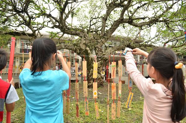 老樹是活的時光機 發展與樹木保育求得雙贏