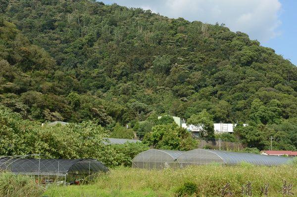 農業與工業發展,近幾年來衝突不斷,圖為內埔農地,白色建築為群岳廠房。(柏原祥攝)