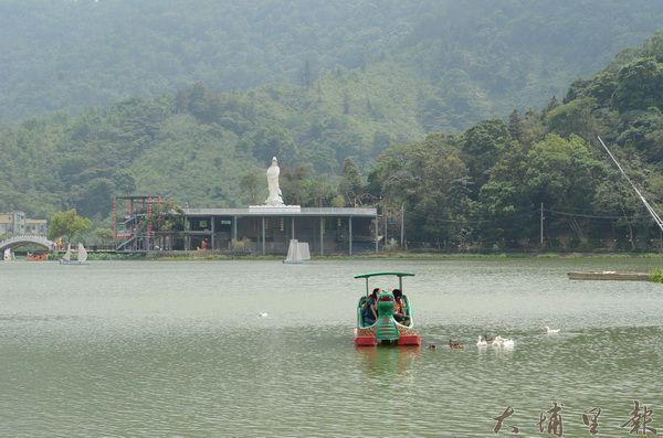 鯉魚潭湖水看起來一片碧綠,其實是優養化的結果。(柏原祥攝)