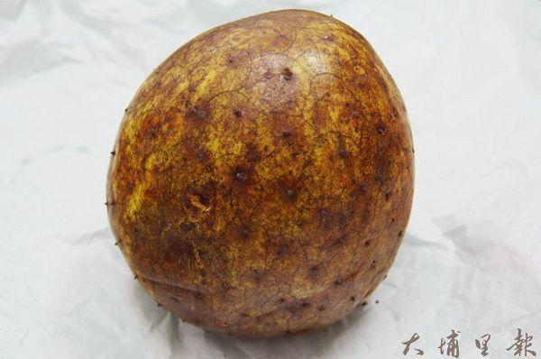 阿娜娜學名「山刺番荔枝」,果實約一顆壘球大小,是日據時代從菲律賓引進的水果。(陳里維攝)