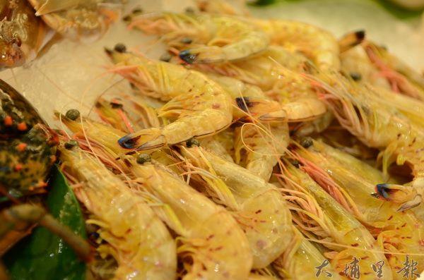 香蕉蝦又名黃金蝦,未經加熱前,呈現亮眼的金黃色。(柏原祥攝)