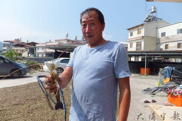 埔里鎮QQ鯛魚無毒魚蝦