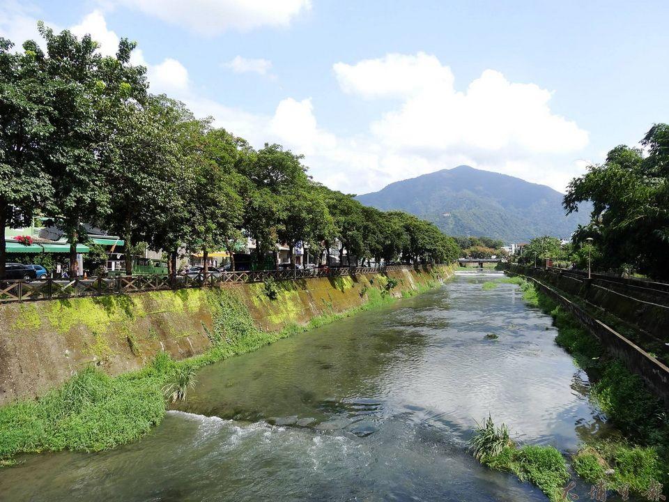 杷城排洪道旁的茄苳樹,形成舒適的生態景觀。(吳宗澤攝)