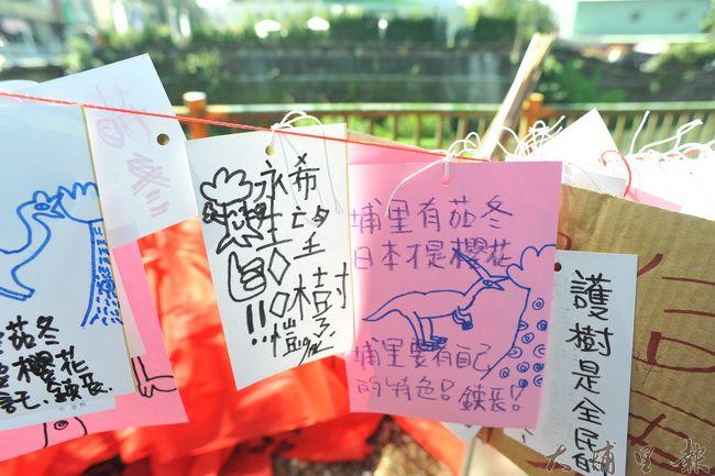 護樹大遊行在埔里登場,許多民眾在樹上掛上卡片,表達護樹的心願。(柏原祥攝)