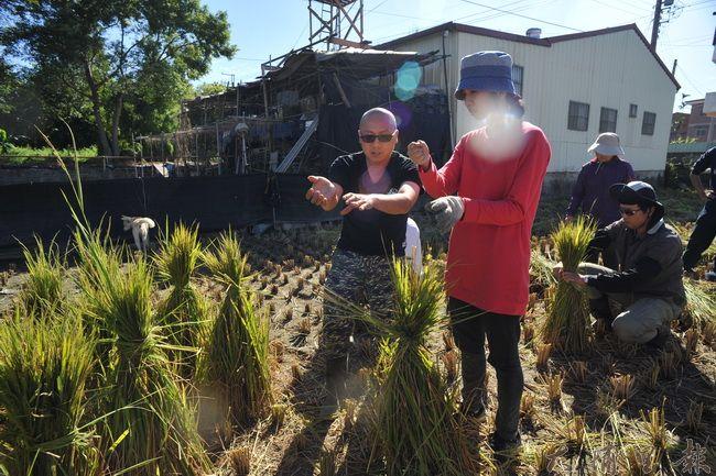 有經驗的農民教導青年志工如何捆紮稻草。(柏原祥攝)