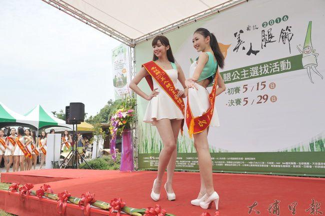 美人腿公主選拔製造吸睛焦點,拓展埔里優質茭白筍的知名度。(柏原祥攝)