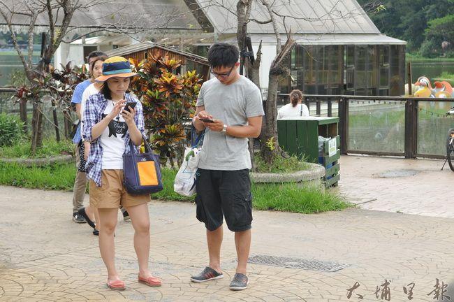 鯉魚潭舉辦寶可夢捉寶大賽,吸引另類觀光客,環潭步道處處可見遊客滑手機找神奇寶貝。(柏原祥攝)