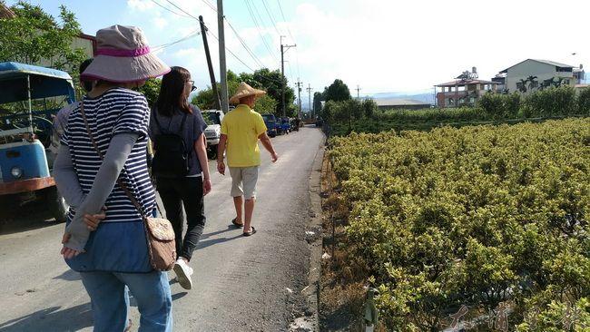 賴克祥大哥帶造訪的年輕人巡視自己的田。(金城嚴 攝)