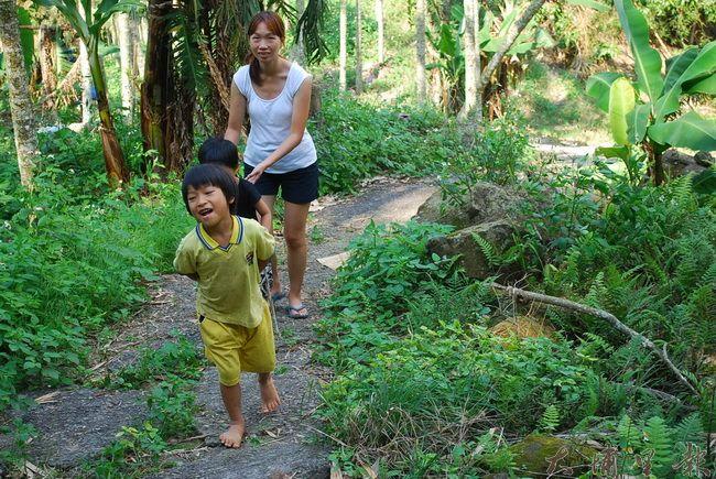 小小嚮導帶領夥伴踏訪八分多的山坡地。(金城嚴 攝)