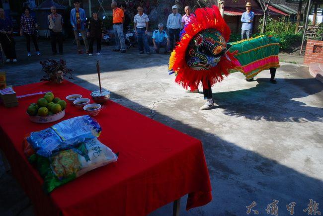 籃城最具代表的舞獅文化,在揭幕儀式後熱鬧慶祝。(金城嚴 攝)