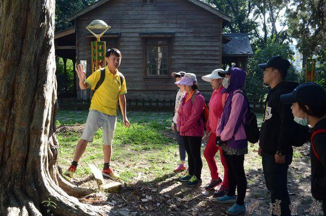 在地青年阿凱請志工們仔細端詳台灣特有種樹木「桃實百日青」。(金城嚴 攝)