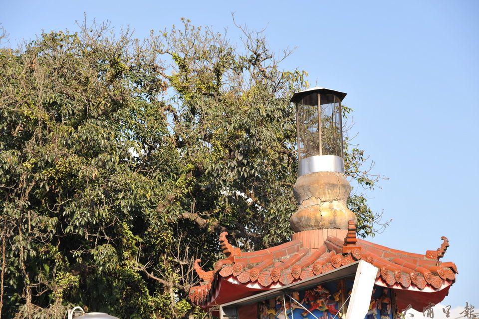 千年茄苳樹王公主幹曾被火燒過,一旁興南宮的金爐產生的熱氣,造成老樹一側枝葉乾枯。(柏原祥 攝)