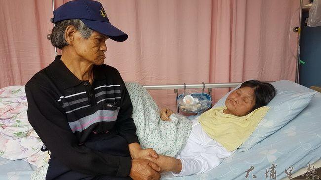 林富美阿嬤累到睡著了,老伴陳木貴無法用言語表達,握著她的手凝視。(王珮茹提供)