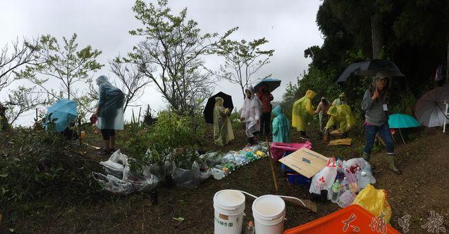 台灣山林復育協會志工們在霧社高峰地區無畏雨勢,進行天然林復育行動。