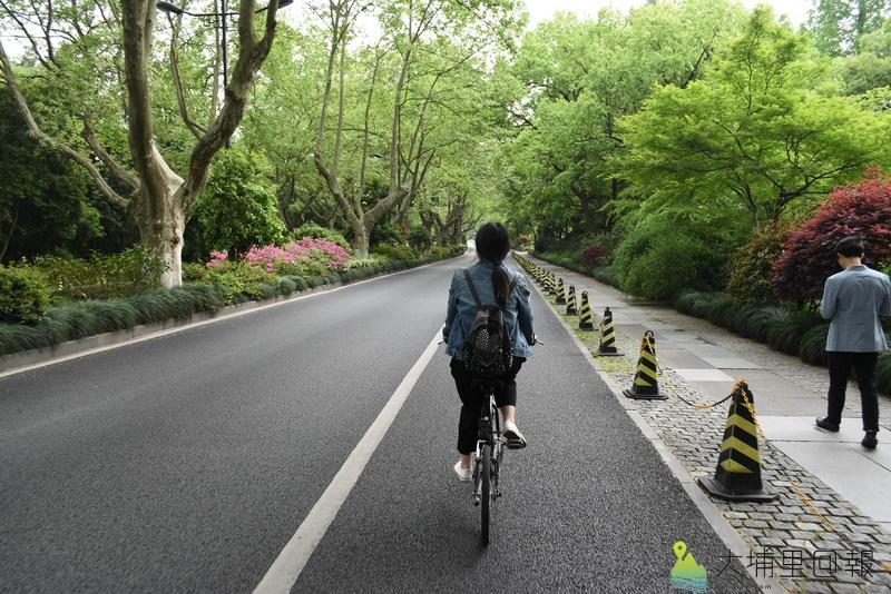 共享單車經營範例,杭州西湖周邊人、車、單車分道。(陳巨凱 攝)