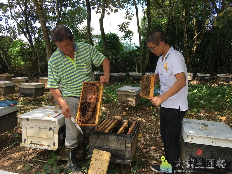 何奕陞(右)與爸爸何文當(左)一人專職養蜂,一人負責行銷,合作無間。(唐茹蘋攝)