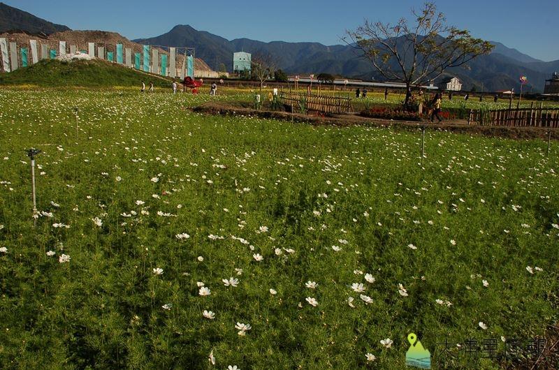 縣府規劃在埔里設置地方特色產業微型園區,預定規劃的土地曾經舉辦過南投縣花卉嘉年華。(柏原祥 攝)
