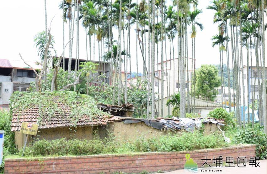 魚池東池村早年的「魚池」所在,現在都已被透天厝所佔據;前方的殘破舊寮,早期為「豬舍」