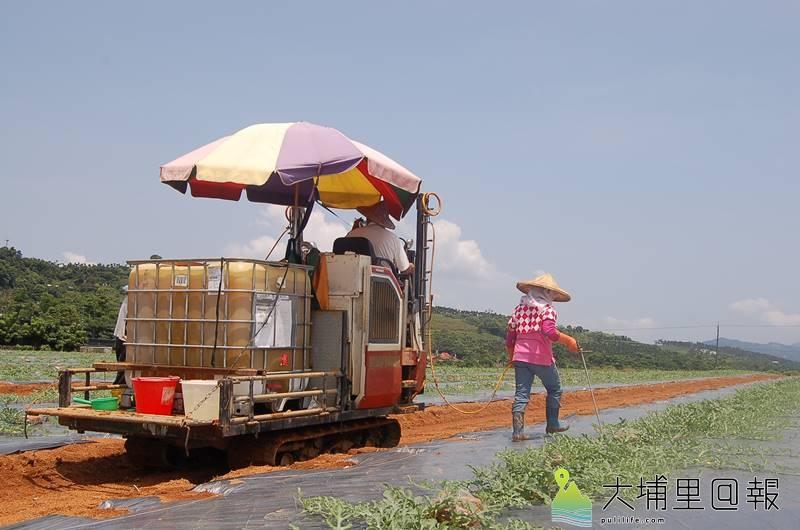 大坪頂農業區長期缺水所苦,農民必須抽地下水,或以灑水車灌溉。(柏原祥 攝)