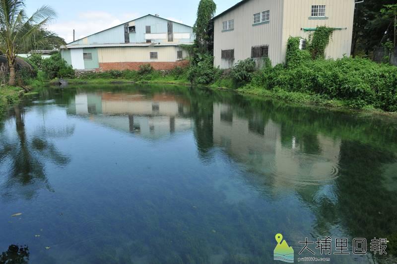 埔里鎮舊名「五港泉」的區域,地下水量相當豐富,有多處自然湧泉形成的埤塘。(柏原祥 攝)