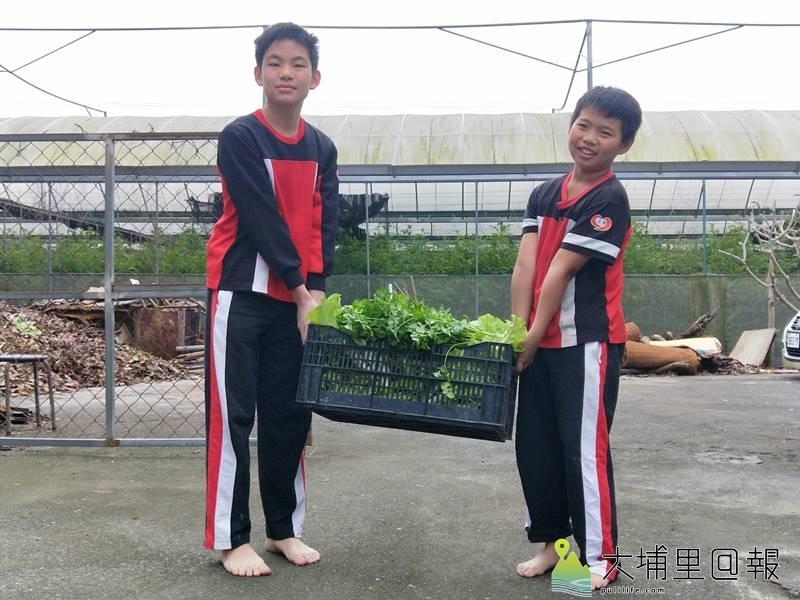 忠孝國小小朋友至菩提長青村食物銀行送自己種的菜做愛心。