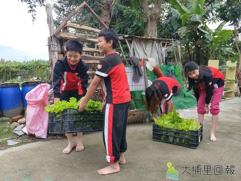 忠孝國小小朋友不僅自己種菜、收成,還將至埔里第三市場賣自己種的菜。