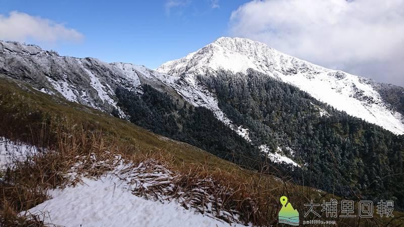 強烈冷氣團來襲,合歡山下雪,山林成了銀白世界。(圖/張禾民提供)
