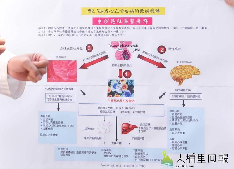 PM2.5空汙造成心血管疾病的致病機轉圖表。(圖/水沙連社區醫療群提供)
