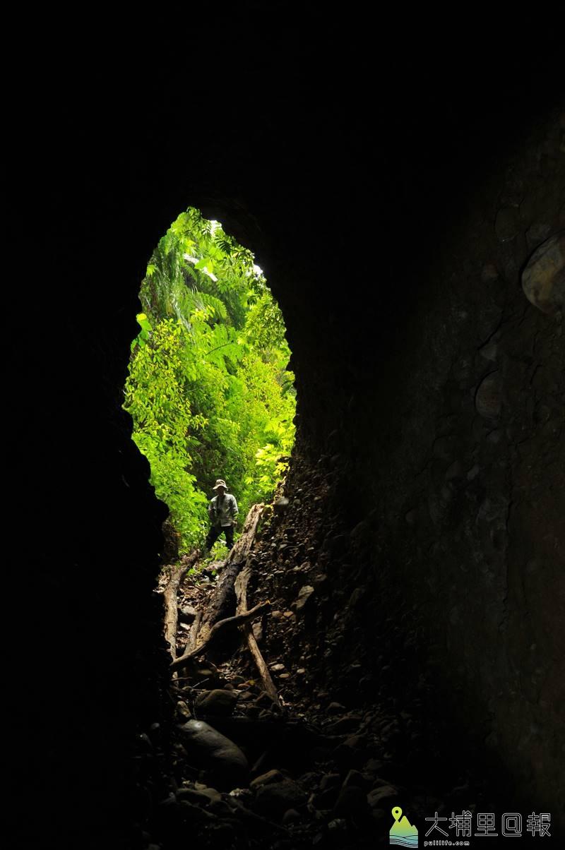 從神秘洞內往洞口拍攝,映襯綠色植被,輪廓酷似台灣島。(柏原祥 攝)