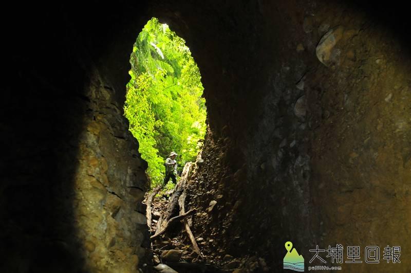 從神秘洞內往洞口拍攝,映襯綠色植被,輪廓酷似翻轉的台灣島。(柏原祥 攝)