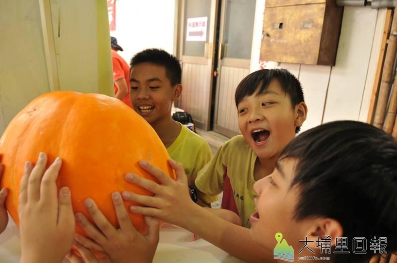 埔里育英國小推展食農教育,種出21台斤的大南瓜,要好幾個小朋友才抬得動。(柏原祥 攝)