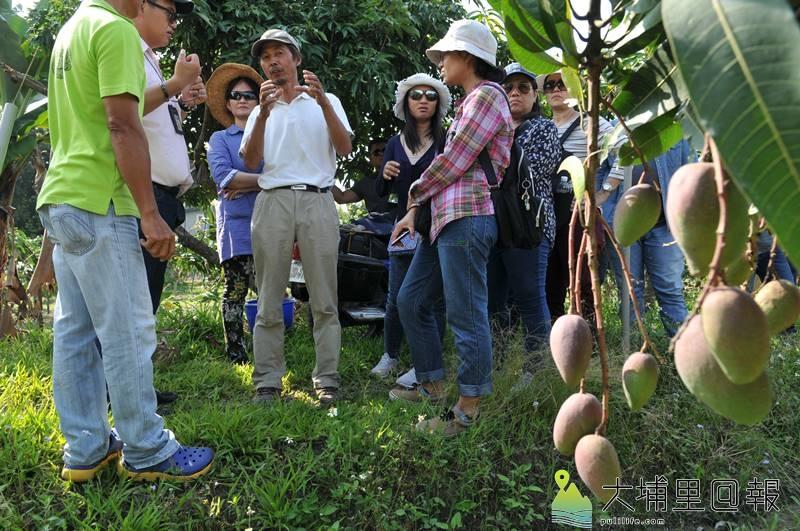 來自泰國的Melon King農業社團至埔里取經,向川遠農經公司學習木瓜、百香果、芒果等作物的種植經驗,學員一路拍照做筆記,學習態度非常認真。(柏原祥 攝)