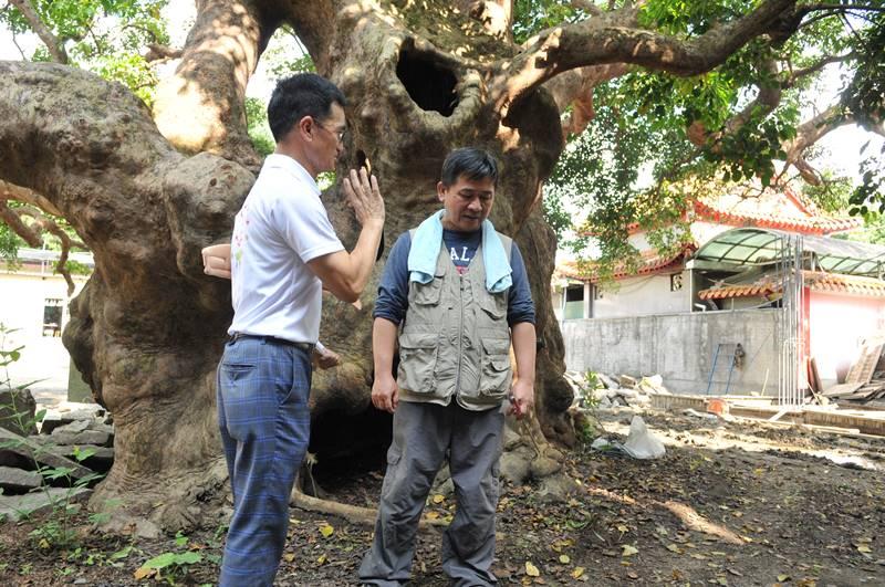 樹醫生劉東啟(右)指出,茄苳樹王公有生命危險,必須盡快搶救,一旁的金樹機構董事長張福源表示會盡力支援。(柏原祥 攝)