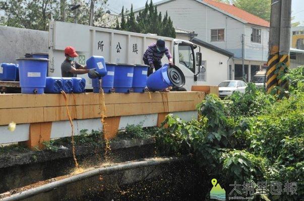 埔里酵素團與鎮公所合作,製作果菜酵素投入杷城大排,期望收到淨化水質的功效。(柏原祥 攝)
