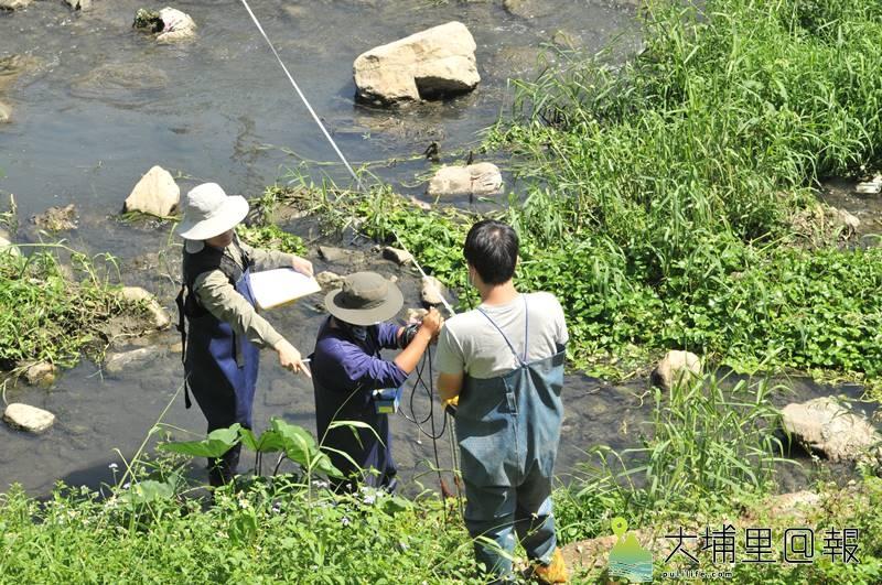 特生中心與暨大土木系團隊研究杷城排洪道動植物棲地及親水環境,科學資料將提供相關單位作為治理的參考。(柏原祥 攝)
